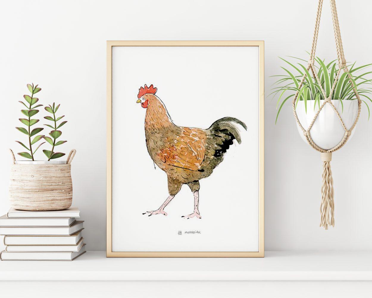 Lámina con la ilustración en acuarela de una gallina. Decoración para la cocina y restaurante. Dibujo pollo.
