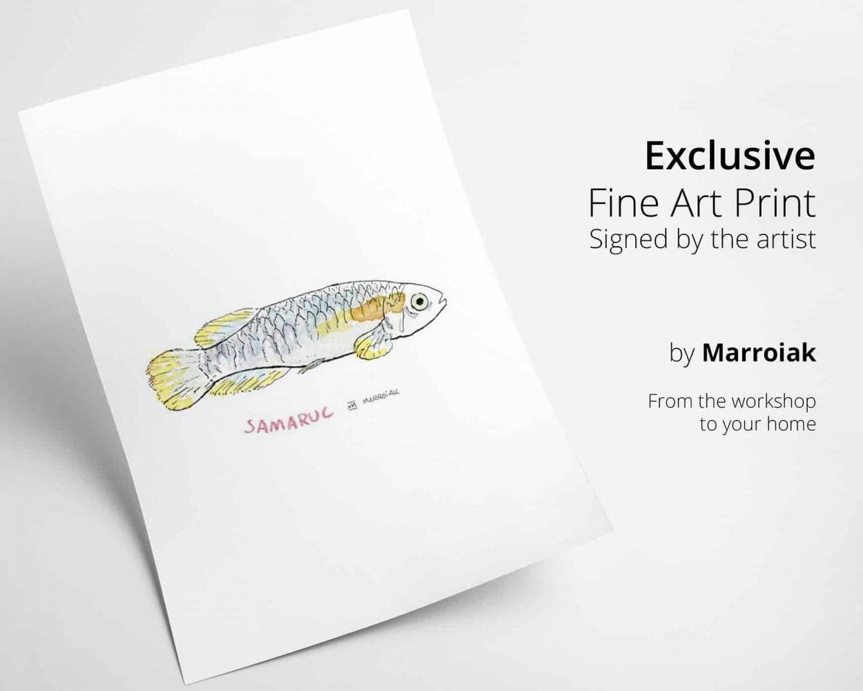 Print con ilustración de un pez samarugo de valencia
